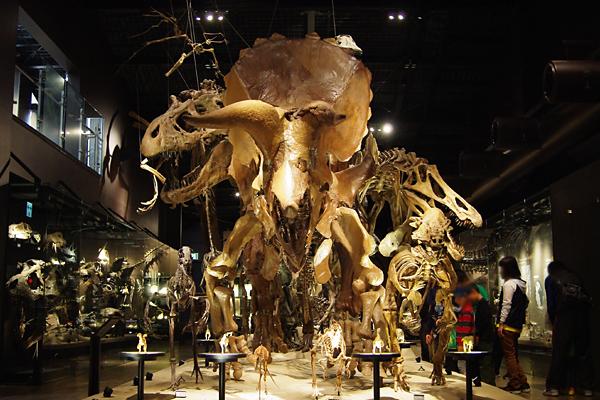 御船恐竜博物館