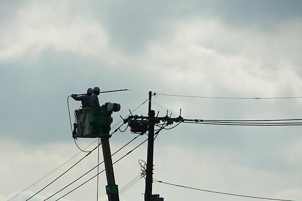 電柱のお掃除
