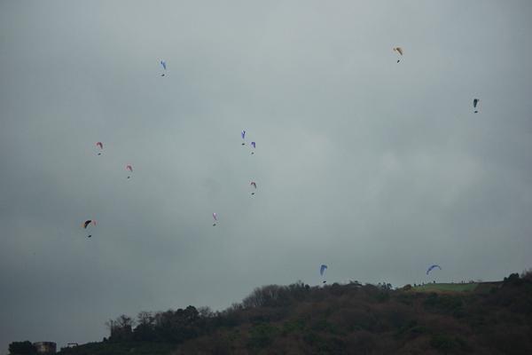 曇天の集団飛行