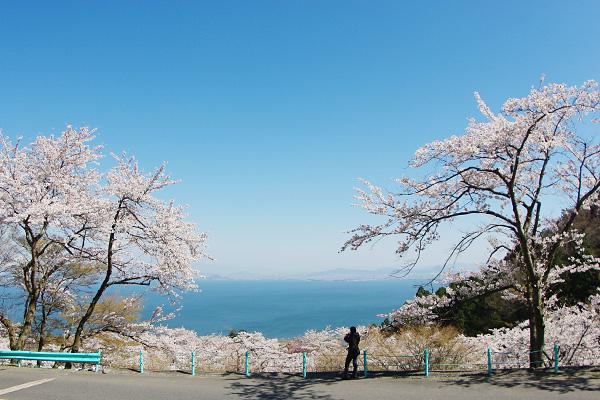 琵琶湖レディ