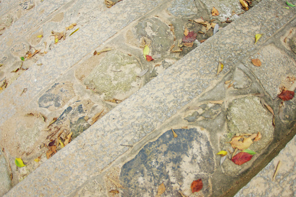 石段と葉っぱ