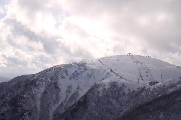 山頂ゲレンデ