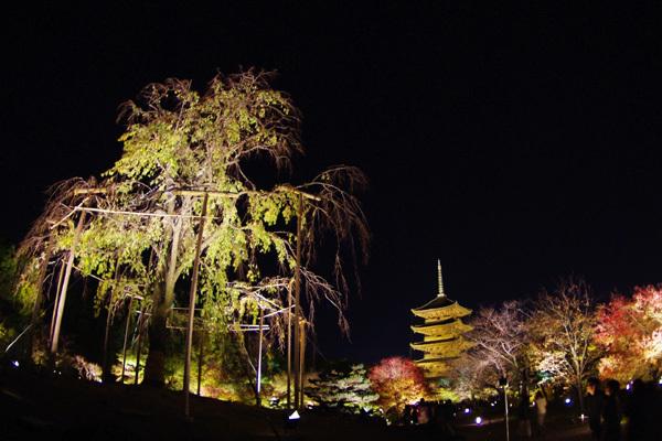 東寺ライトアップ〜その4