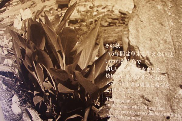 広島平和記念資料館〜その3