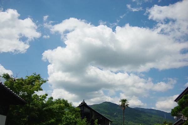 いいお天氣