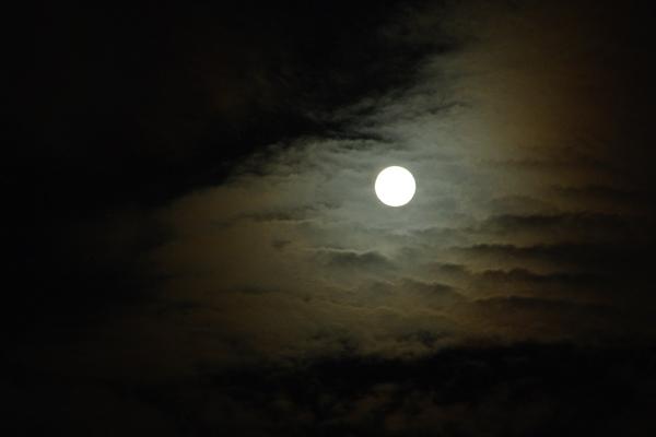 月を喰らう獣_10