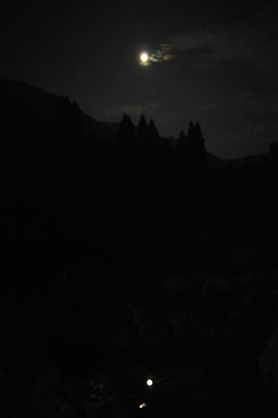 月を喰らう獣_03