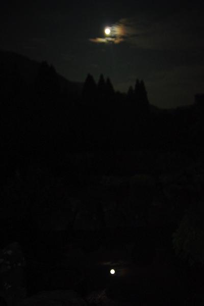 月を喰らう獣_05