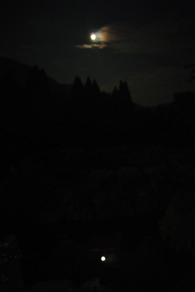 月を喰らう獣_06