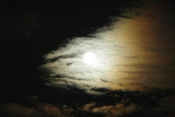 月を喰らう獣_09