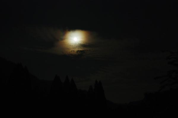 月を喰らう獣_11