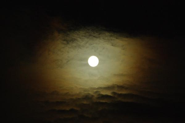 月を喰らう獣_12